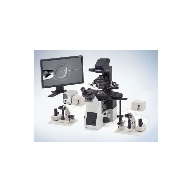 Sistema de micromanipulação ICSI